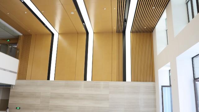 理工大学木纹铝单板